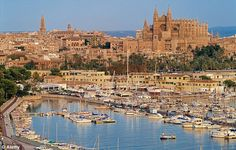 Home from home: The Spanish royals will be spending their holiday in their Palma de Mallorca royal residence