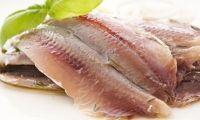 Bonito del norte, atún rojo, anchoas del Cantábrico, mojama, huevas de merluza... todo el sabor del mar.