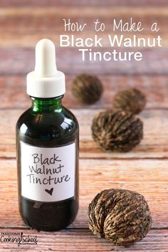 How to Make a Black Walnut Tincture | Just before the cold sets in, God leaves us a final parting gift before winter hibernation... The black walnut tree is ready for harvest. We had been purchasing an herbal mixture for our goats. When we realized the main ingredient was black walnut hull, it was a no-brainer! Time to put these ankle-rollers to good use because black walnuts have amazing properties! | TraditionalCookingSchool.com