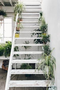 A staircase decorated with plants at Clapton Tram - a location hire space in London.