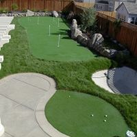 Backyard Putting Green Designs heres a custom green neatly integrated into the surrounding lawn situated at the end of A Back Yard Putting Green Would Be Verrrrrrry Cool Gardening Pinterest My Boys Backyards And Front Yards