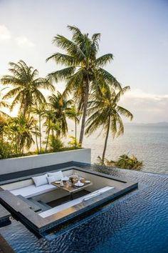 piscine palmier table dinner