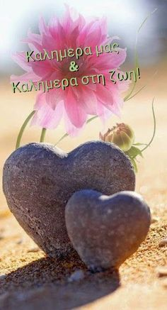 Heart In Nature, Heart Art, I Love Heart, With All My Heart, Heart Images, Love Symbols, All You Need Is Love, Pretty In Pink, Beautiful Flowers