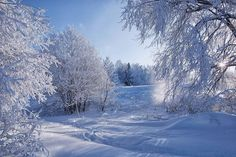 I Love Winter, Winter Snow, Winter Time, Winter Season, Winter Christmas, Forest Scenery, Winter Scenery, Like Image, Deep Forest