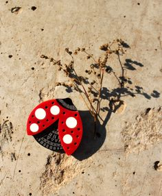 Ladybug Brooch, Red Lady Bug Pin, Acrylic Jewelry by Nechegonadet on Etsy