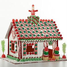 Reuseable Gingerbread house