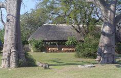 Mvuu Camp, Liwonde, Malawi, East Central Africa