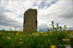Borve standing stone in Harris by chris murray
