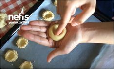Fındıklı Kurabiye Tarifi - Nefis Yemek Tarifleri Eggs, Breakfast, Floral, Food, Food Recipes, Morning Coffee, Florals, Meal, Egg