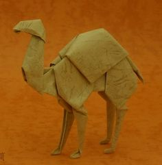 Camel origami