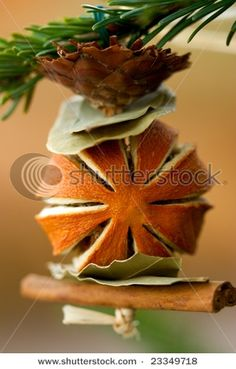 For Hope and Alyssa... dried fruit ornament