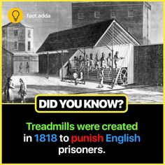 Wow Facts, Amazing Facts, Did You Know, Prison, Good Morning, Knowledge, Movie Posters, Fun, Good Day