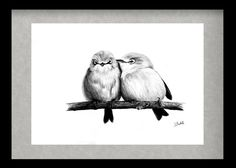 I really like this drawing because of the cuteness and the love between the birds Hope you like it as well. Bird 14-ankit1480.deviantart.com/art/B… Bird 16-ankit1480.deviantart.c...