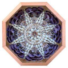 Nantucket Sailors' Valentine Seashell Mosaic Octagonal by NSVS