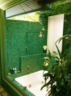 Personal dream indoor/outdoor shower and bath.  Who could ask for more?? Found via Houzz!