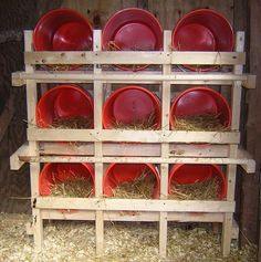 Neat idea- bucket nesting boxes, like this idea - easy to clean!