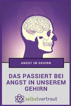 DAS passiert bei Angst in unserem Gehirn #positivdenken #angst #überwinden