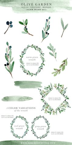 Watercolor Olive Branch Clipart, Rustic Greenery Wedding Invitation Graphics, Modern Floral Watercolor Backgrounds for Business Cards, Hand Painted Floral Illustrations, Stock Graphics  'Olive Garden' is a set of hand-painted watercolor clipart, textures, background and borders. These are Greenery & nature inspired and seek to capture the essence of summer. Painted in a modern style, these are perfect for adding a touch of watercolor effects to your designs. These are perfect for use in…