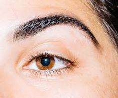 Get your overplucked brows back on fleek with all-natural eyebrow growth enhancers in oil and balm form. Free USA shipping with orders $50 or more! beardandcompany.com