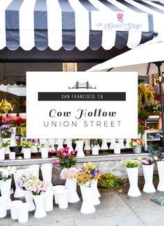 Exploring San Francisco: Union Street, Cow Hollow