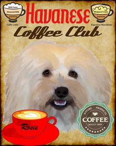 Havanese Dog Coffee Club Art Poster Print YOUR by SaveADogRescue