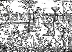 Herbs of the Field and Herbs of the Garden in Byzantine Medicinal Pharmacy