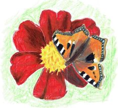 oil pastels Butterfly On Flower, Oil Pastels, Flowers, Animals, Collection, Art, Animales, Art Background, Animaux