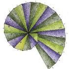 FREE - The Pythagorean spiral project uses the Pythagorean Theorem to create a beautiful spiral if done correctly.  This can be used from Pre-Algebra all ...