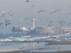 Scheveningen The Netherlands