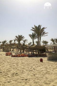 Yoga Retreat in Ägypten Yoga Retreat, Meditation, Am Meer, Beach, Outdoor, Red Sea, Recovery, Sunset