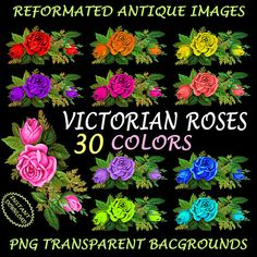 Rose Clipart  30 Victorian Roses Digitally by ArtWildflowersDigi