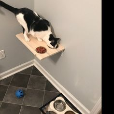 Elevated Cat Feeder & Stairs Set, Wall Mounted Cat Food Perch and 5 Wood Steps, Cat Shelf Feeder For Walls Cat Feeding Platform Station Dish Floating Cat Shelves, Cat Feeding Station, Cat Wall Furniture, Cat Climbing Tree, Cat Stairs, Cat Perch, Wood Cat, Cat Hammock, Cat Feeder