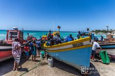 Arniston harbour More Photos, South Africa, Photographs, Travel, Viajes, Photos, Destinations, Traveling, Trips