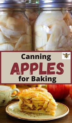 Ever wonder how to can apples for baking? Wouldn't it be wonderful to be able to use apples that you canned at home in all your apple recipes? Canning apples at home is simple to do and will save you time and money. I've got all the tips and tricks, et's talk about how to can apples the easy way!