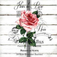 4 x single paper napkins vintage style rose botanical