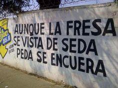 humor mexicano