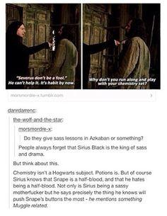 Sirius and Severus