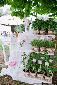 Tableau de mariage con piante aromatiche per un matrimonio country chic