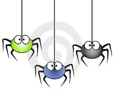 Spiders That Are Good for Your House to Keep Other Pests Away