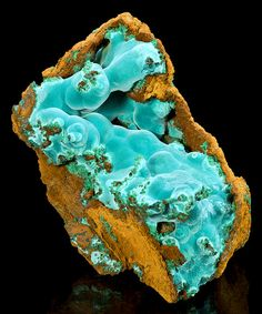 Blue Rosasite rolling atop green Aurichalcite on limonite matrix