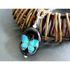 Hand Painted Blue Butterfly Cameo Pendant Black Onyx Stone Chain... ($20) ❤ liked on Polyvore featuring jewelry, chains jewelry, cameo jewelry, cameo pendant, blue butterfly jewelry and blue jewellery