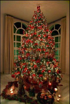 Dedicated to me by my dear amigo,Jose (España) the most beautiful tree in the world!mostly Patricia Breen pieces Ribbon On Christmas Tree, Purple Christmas, Christmas Love, Xmas Tree, All Things Christmas, Traditional Christmas Tree, Christmas Tables, Coastal Christmas, Christmas Crafts