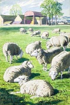 C F Tunnicliffe - Sheep