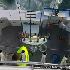 GOOD MORNING! YOUR Morning FishMonster Report From Key West. https://www.facebook.com/fishmonstermagazine/videos/10154399082000419/
