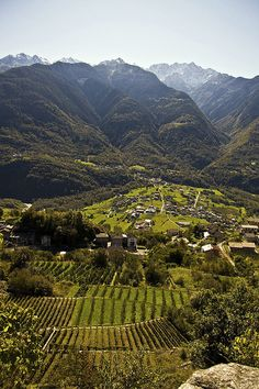 Campi della Valgella, Valtellina, Italy