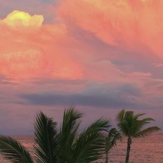 Imagem de sky, sunset, and palms Sky Aesthetic, Aesthetic Photo, Aesthetic Pictures, Beautiful World, Beautiful Places, Pretty Sky, Photocollage, Belle Photo, Aesthetic Wallpapers