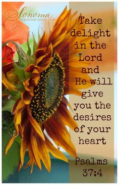 Psalm 37:4 ~ Take delight in the Lord and He will give you the desires of your heart...
