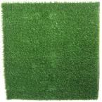 Visit The Home Depot to buy RealGrass 10 ft. x 10 ft.) RealGrass Artificial Grass Synthetic Turf Kennel Mat for Pets Dog Crate Mats, Cat Fence, Pet 5, Pet Kennels, Dog Potty, Fake Grass, Pet Gear, Artificial Turf, Dog Runs