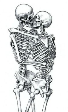 Two human skeletons and I have just the category for them.