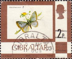 Post Stamps of Gibraltar 1977 Birds Flowers Fish and Butterflies Set Fine Mint SG 374 389a Scott 340 355a For Sale